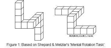 xMental-rotation-shephard.jpg.pagespeed.ic.RuyiNrOiDo.jpg