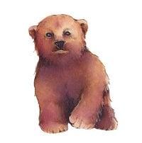 xbaby-bear-by-Iya_Balushkina-shutterstock-200x.jpg.pagespeed.ic.tz5XnzQInv.jpg