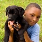 xdog-boy.jpg.pagespeed.ic.nd4ZuPJuBr.jpg