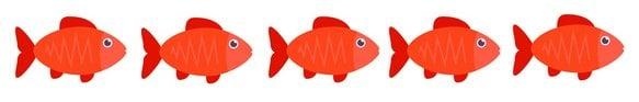 xflanker-fish-congruent-Photoplotnikov-istock-strip.jpg.pagespeed.ic.OA5VciHnpl.jpg